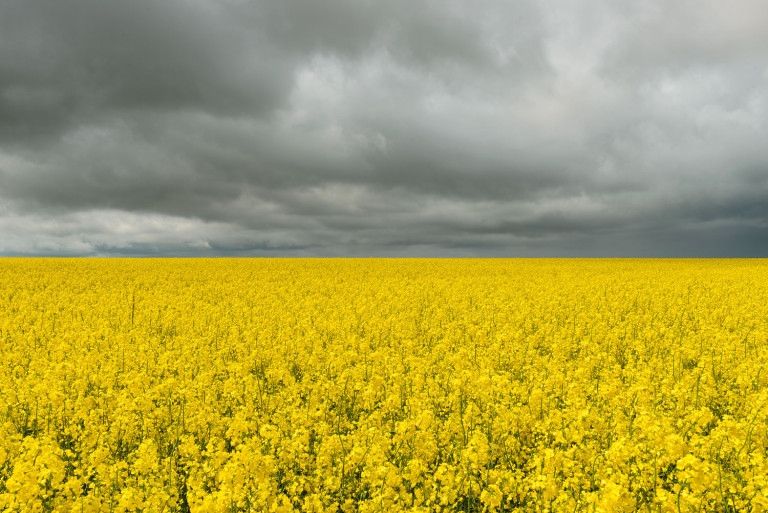 english countryside in spring with dark clouds