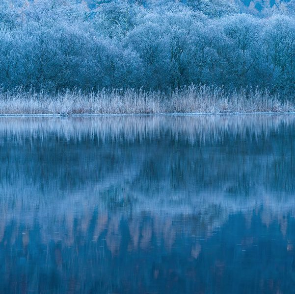 Derwent Winter